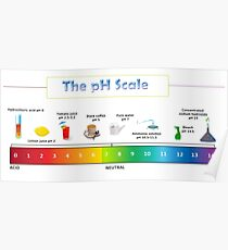 The pH Scale  Poster