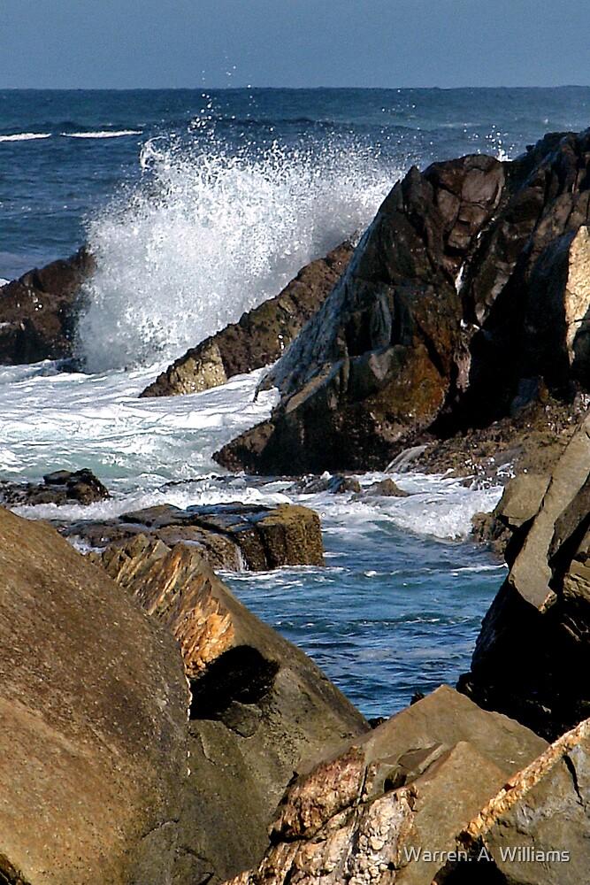 Between the Rocks by Warren. A. Williams