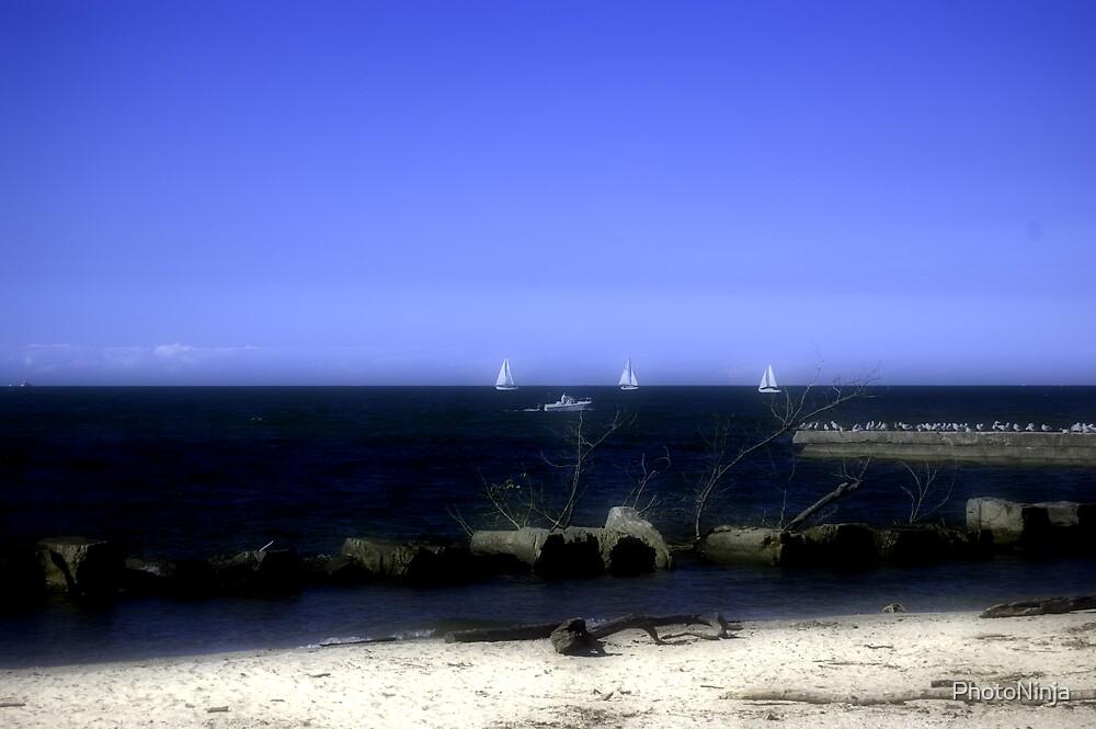 North Shore by PhotoNinja