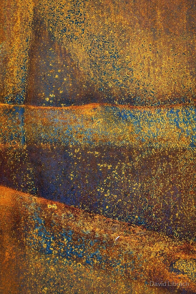 Rusted Landscape by David Librach - DL Photography -