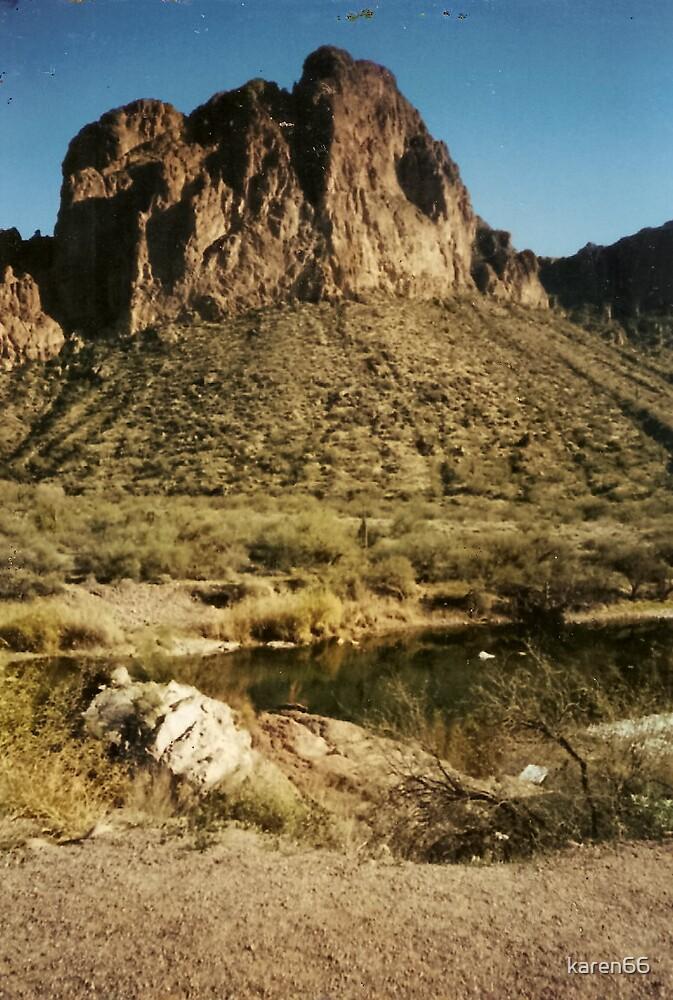 Arizona Mountains By the Salt River by karen66