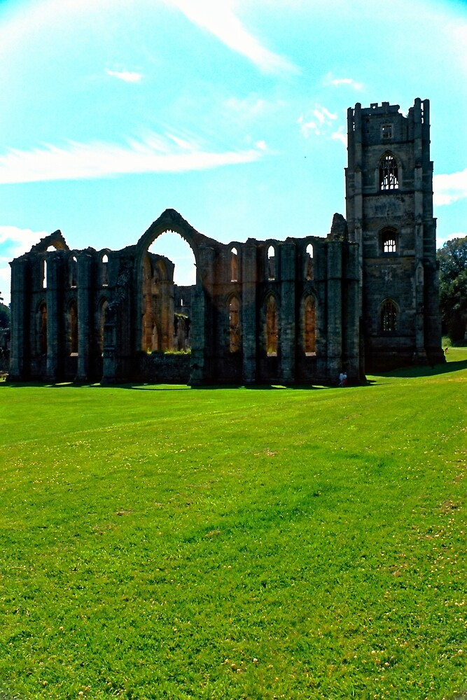 Fountains Abbey 13 by Priscilla Turner