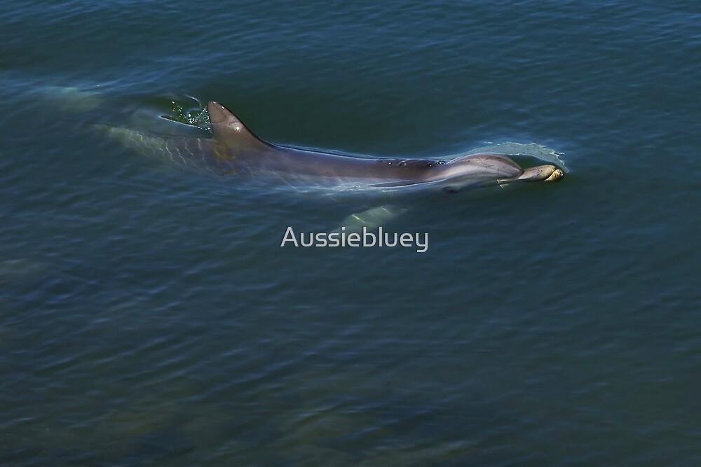 Breaking through. by Aussiebluey