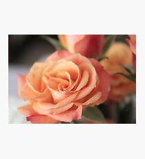 Roses for the Bride Photographic Print