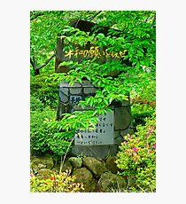 Nagasaki Peace Park Study 8  Photographic Print