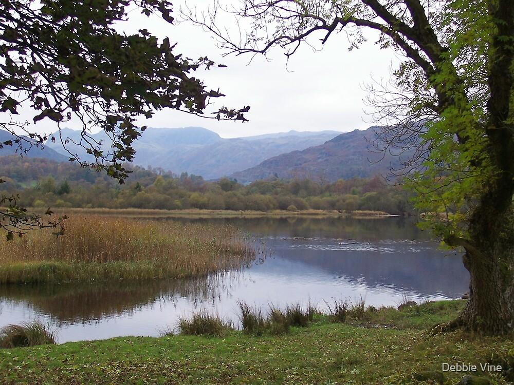 The Lake District 2 by Debbie Vine