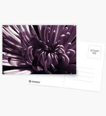 Unfold Postcards