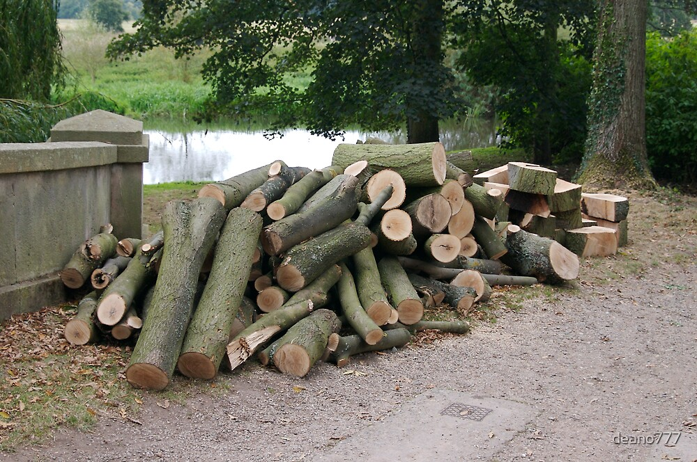 pile of logs by deano777