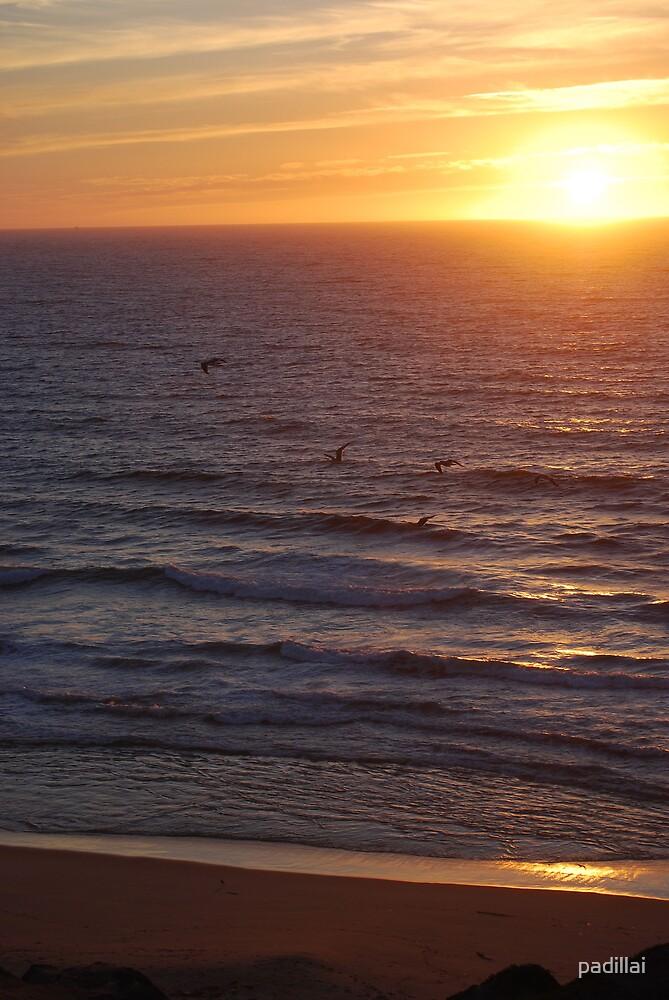 Monterey Bay Sunset by padillai