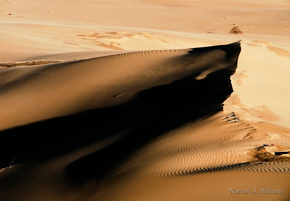 The Dune by Warren. A. Williams