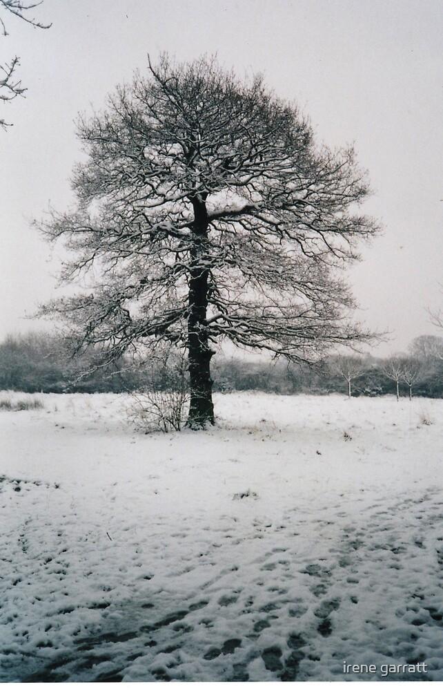 A wintery scene by irene garratt