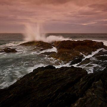 Moonee Headland 3 by Snelvis