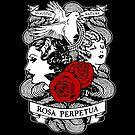 Rose Garden by Tom Burns