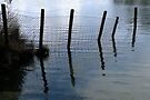 A Water Fence by Jo Nijenhuis