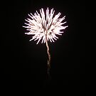 Flower of light by Wrigglefish