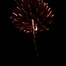 Red Allium of Light by Wrigglefish