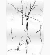 Winter Twigs 1 Hight Contrast Poster