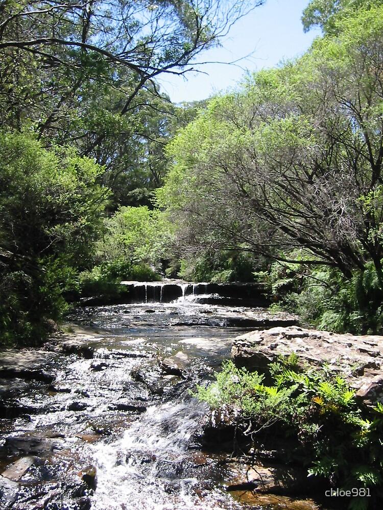 Blue Mountains, NSW, Australia by chloe981