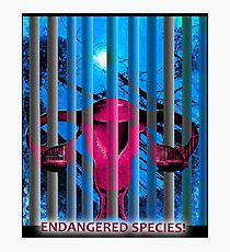 Endangered Species! Photographic Print