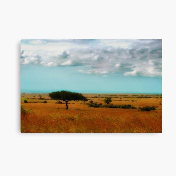 Wonder of the Mara Canvas Print