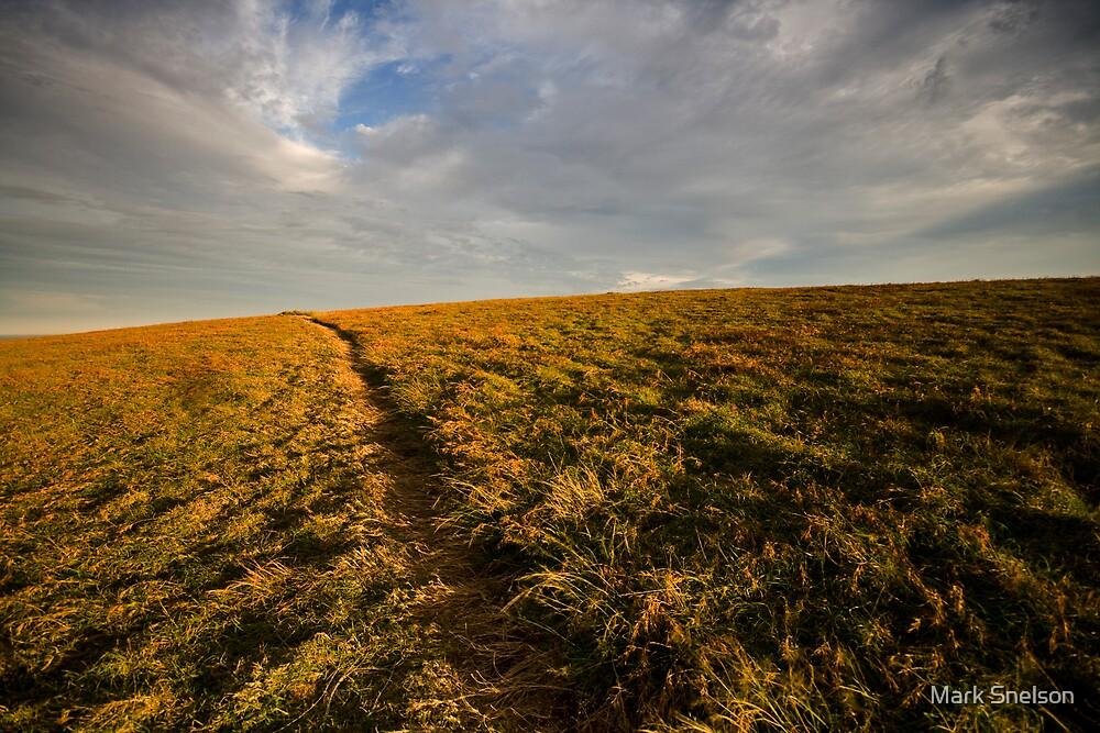 Moonee Headland 5 by Mark Snelson