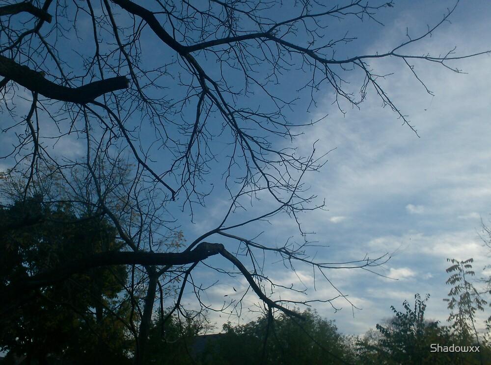 Clouds by Shadowxx