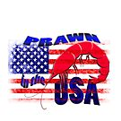 Prawn in the USA by gruntpig