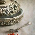 seeds  by Jill Ferry
