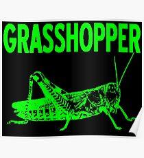 GRASSHOPPER-2 Poster