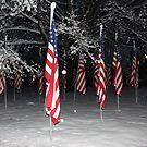 American Flag 2 by ChereeCheree