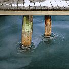 Old Dock in Winter by marybedy