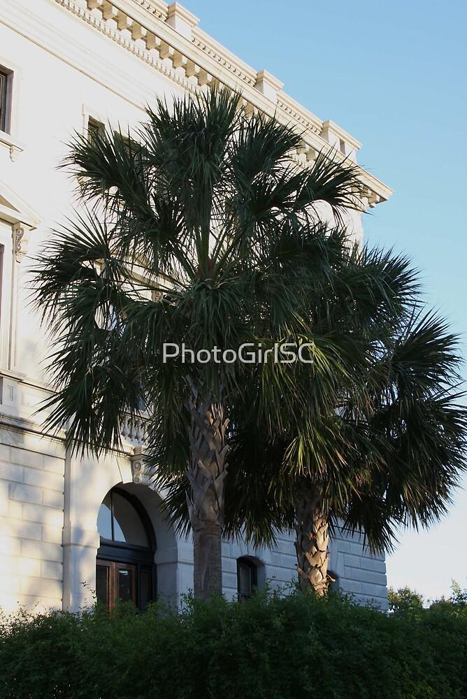 State House by Bjana Hoey