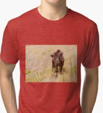 Curious Young Bison Tri-blend T-Shirt