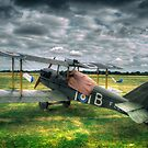 Royal Aircraft Factory SE-5A Replica by Nigel Bangert