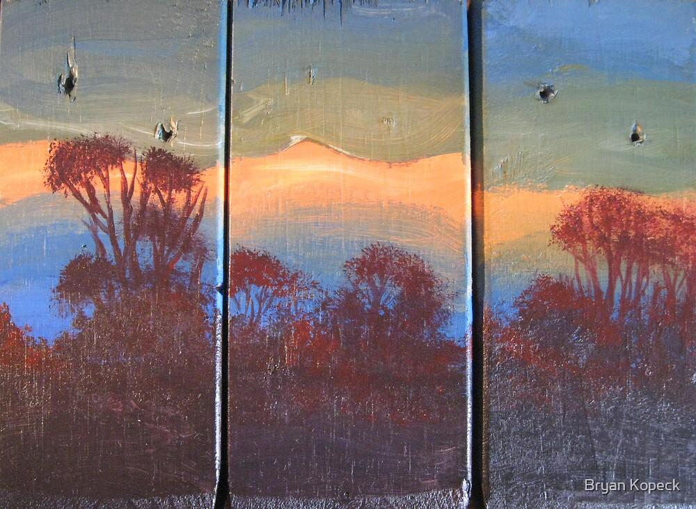 The Land by Bryan Kopeck