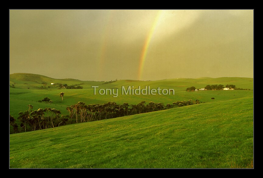under the rainbow... by Tony Middleton