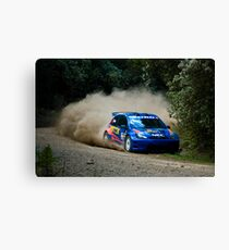 Dusty Guest Canvas Print