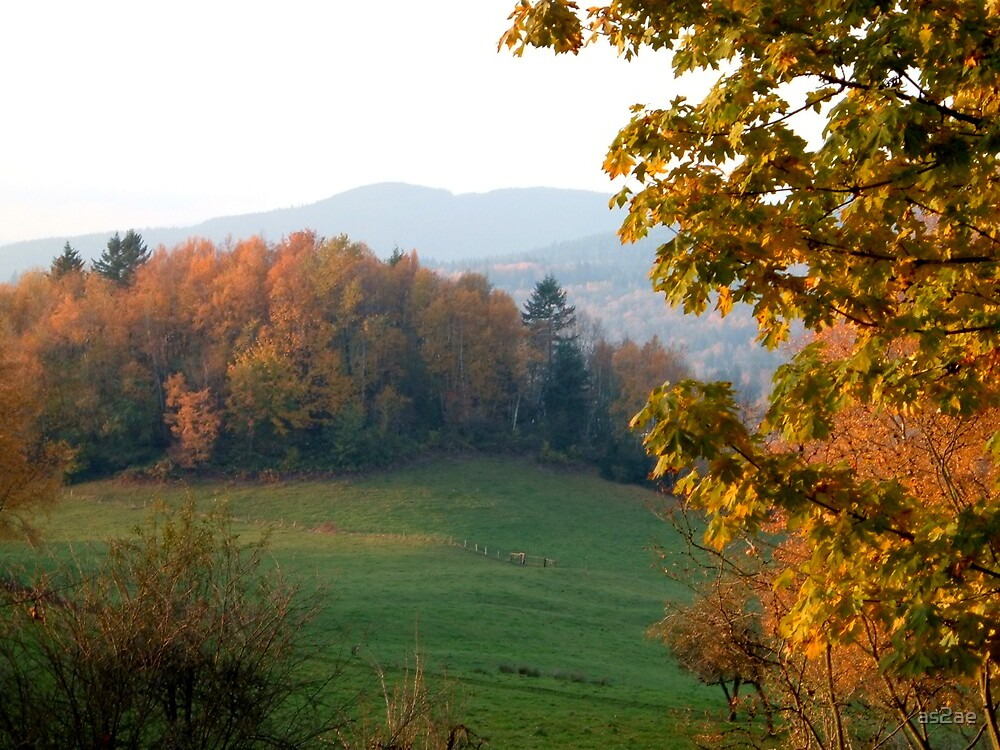 autumn landscape by as2ae