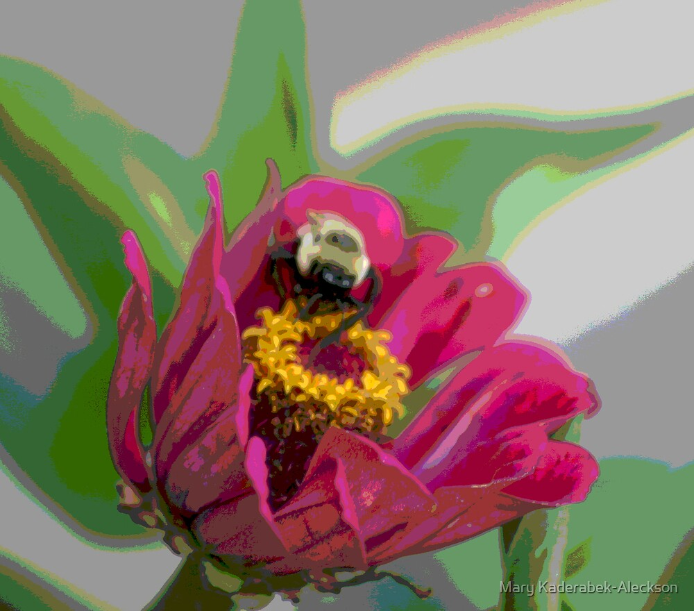 Zinnia and that Bee by Mary Kaderabek-Aleckson