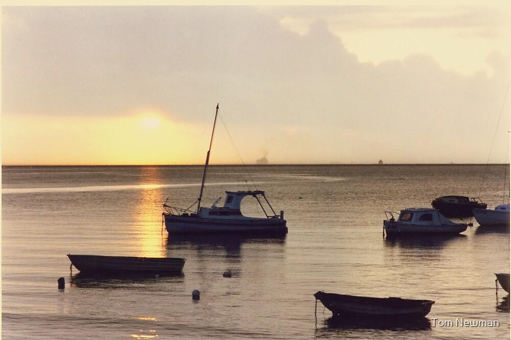 Motor Boats at Rosebud II by Tom Newman