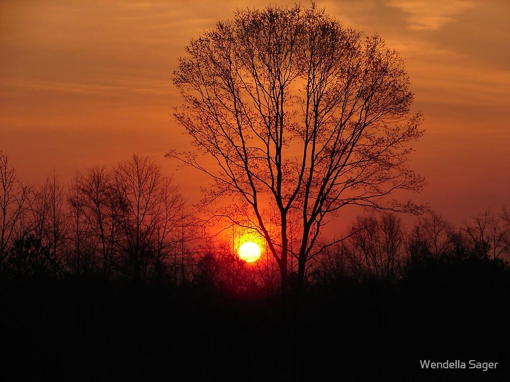 Sunrise by Wendella Reeves