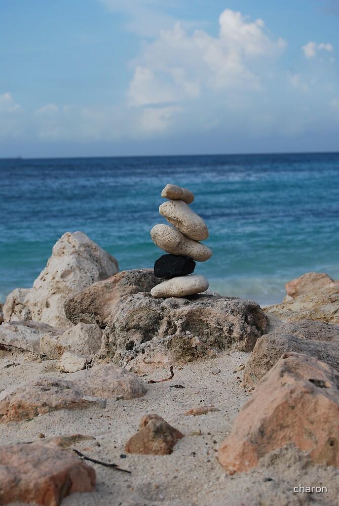 At the beach @ Aruba by charon