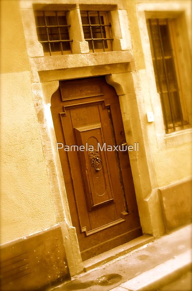 Door in the Wall by Pamela Maxwell