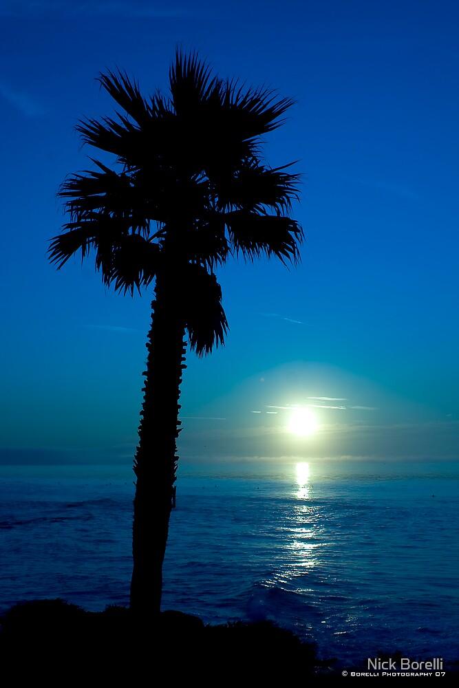 Blue Palm by Nick Borelli