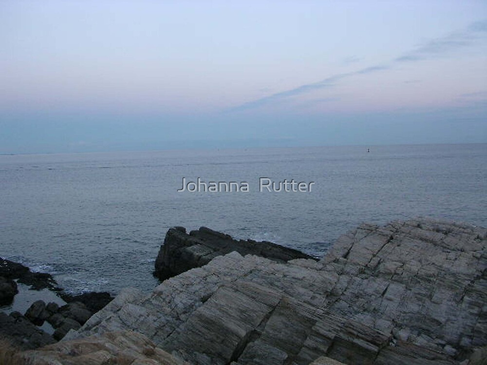 Maine Rocks by Johanna  Rutter