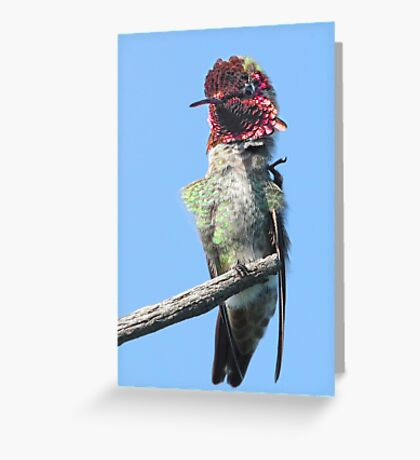 Can't quite reach! Greeting Card