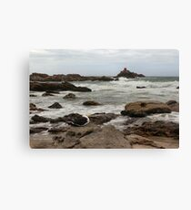 Gull on the rocks at Mauao Canvas Print