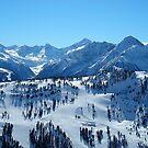 Austrian Alps by berndt2