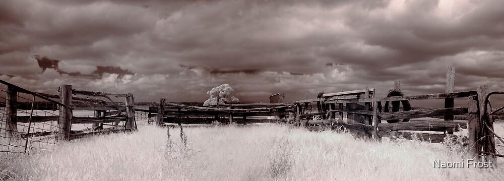 Uncle Bernie's Farm by Naomi Frost