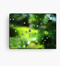 Spring Showers Canvas Print